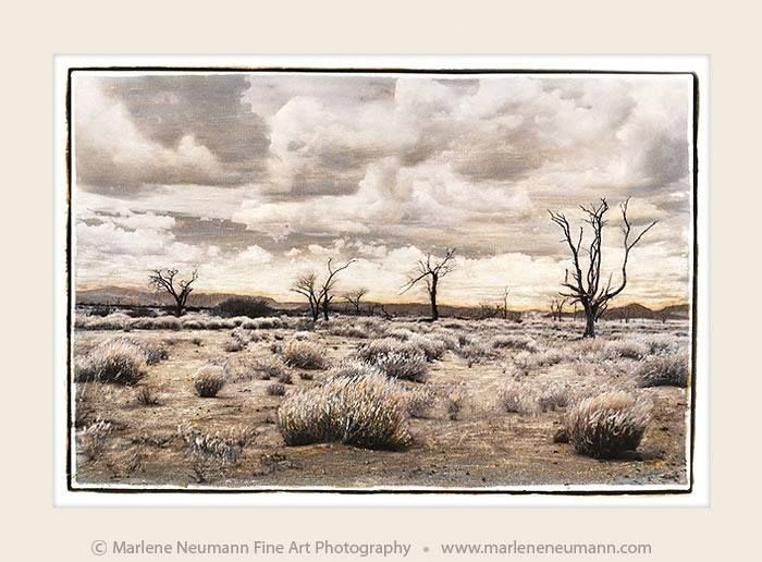 A DESERT WALK...One of my favourite images taken on route to Sossusvlei. The scorching heat..nothing compares to the silence of the desert...Enjoy this moment with me...Love Marlene