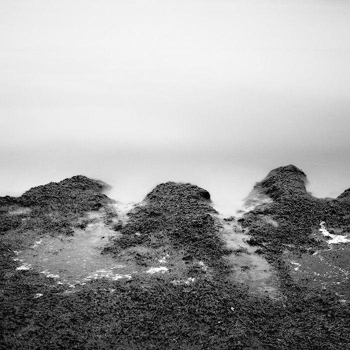 seahore