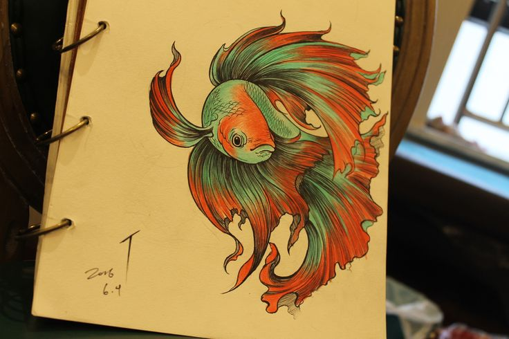 Gorgeous drawing! Betta fish
