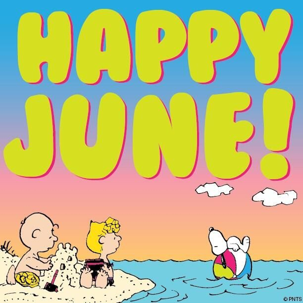 peanuts on snoopy peanuts pinterest snoopy happy june and june