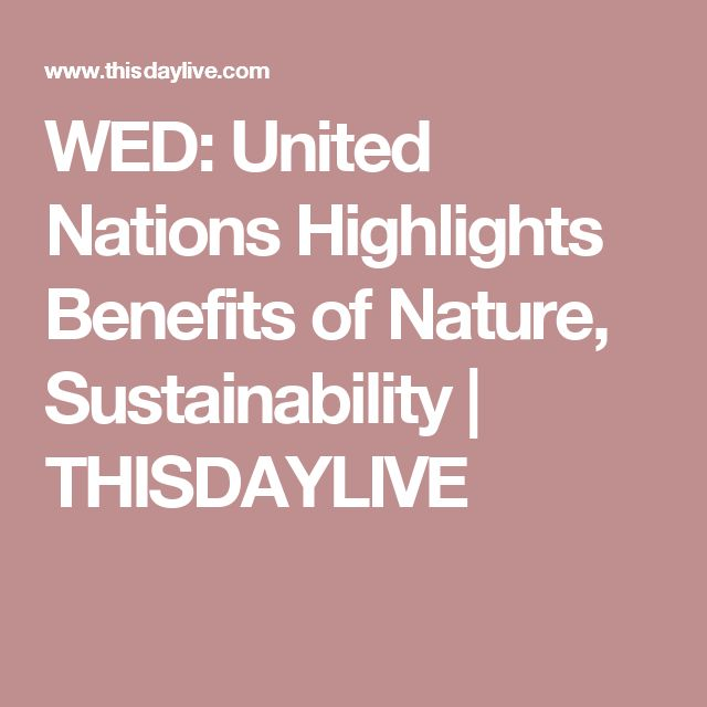 WED: United Nations Highlights Benefits of Nature, Sustainability | THISDAYLIVE