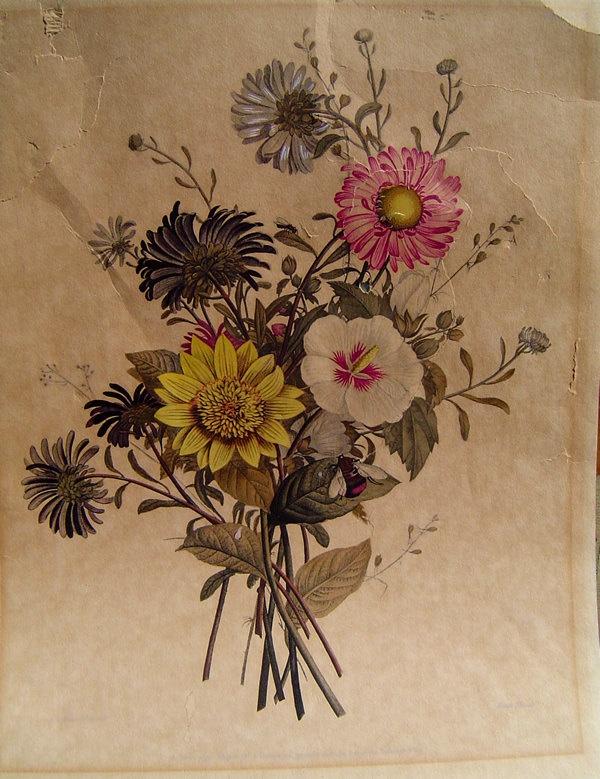VINTAGE BOTANICAL ART - Artist Embellished Original ...  VINTAGE BOTANIC...