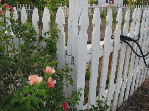 Build a Colonial Williamsburg style picket fence (free info) - American Garden Tools - Garden/Orchard/Farming - Farm & Garden