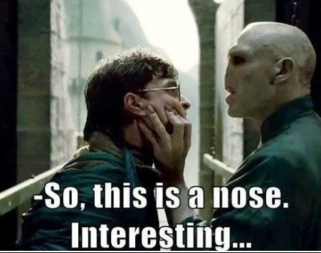 ( voldamort ) what is nose - nose ( harry ) you!
