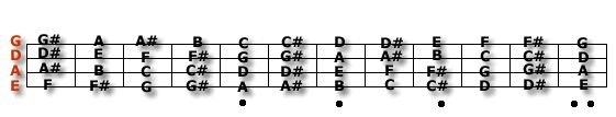 What are the notes on a bass guitar? http://www.guitarnoise.com/help/bass/