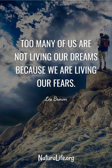 Too Many of Us Are Not Living Our Dreams Because We Are Living Our Fears quote by les brown