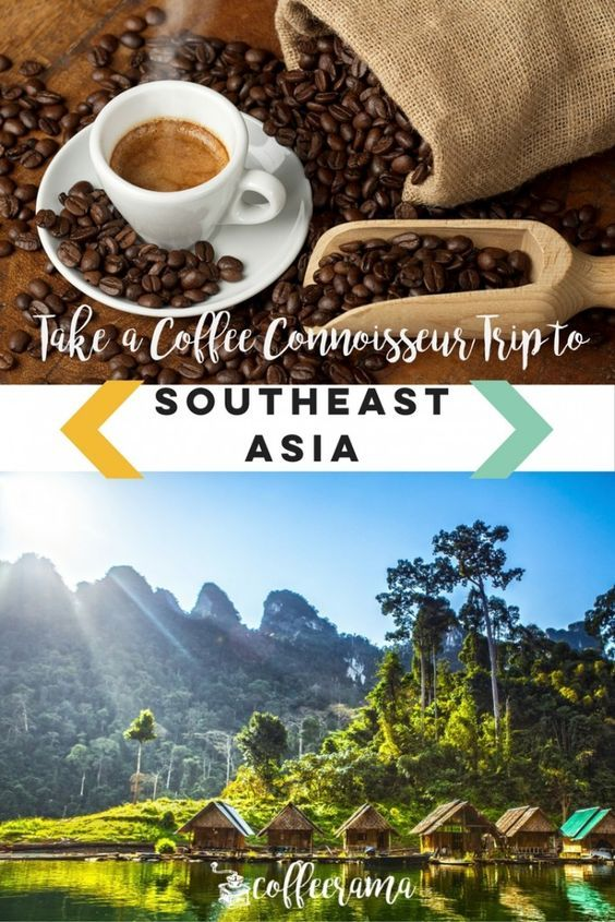 Take a Coffee Connoisseur Trip to Southeast Asia A Whole