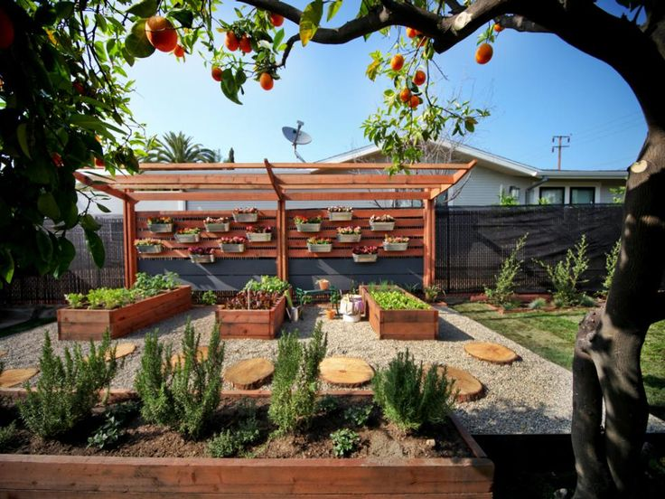 Log slice pavers create a rustic walkway through this beautiful garden. A pergola structure provides a bit of shade for the raised garden below, but also serves as the wall for a vertical garden to maximize space.