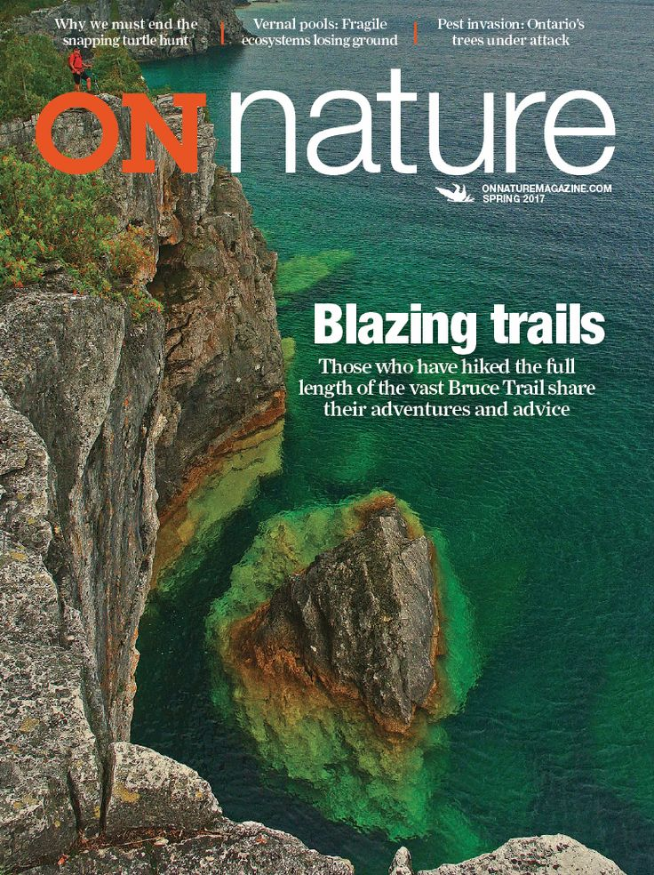On Nature Magazine
