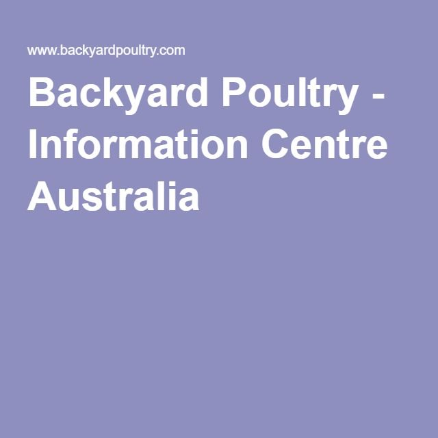 Backyard Poultry Information Centre Australia Chooks Poultry - Backyard poultry information centre australia