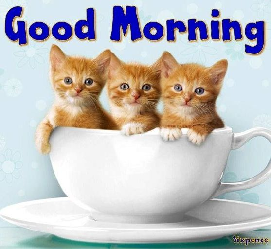 Good Morning Via My Cheery Corner Page On Facebook Good