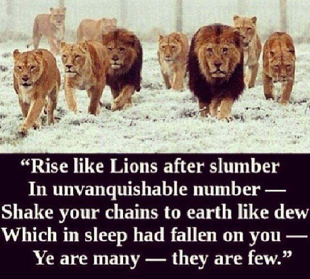 Rise like Lions!