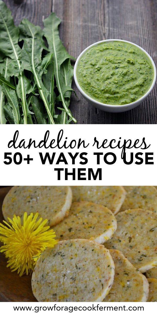 50 Dandelion Recipes Drinks Sweets Soap Remedies More Dandelion Recipes Herb Recipes Foraging Recipes