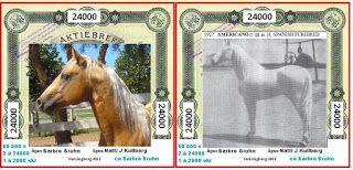 Pitbull Författare Barbro Bruhn: Fernando ! vi sammanställer nu hästar och hundar t...