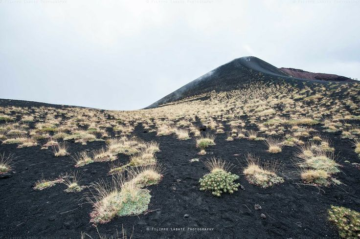 Etna by Filippo Labate on 500px