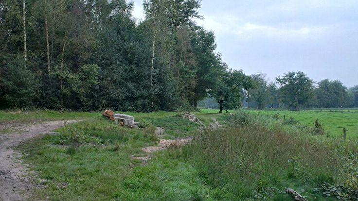 Vroege herfst op landgoed Twickel
