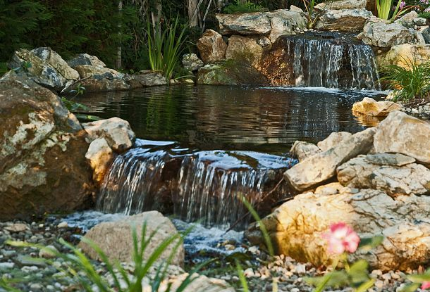 25 best bog images on pinterest ponds water features for Bog filter waterfall