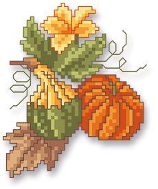 Indian Summer pumpkins