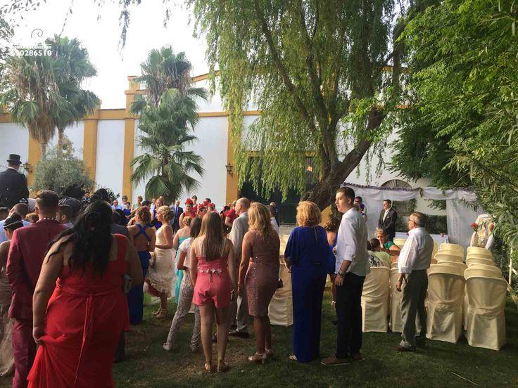 Algunos momentos de la boda de Fran y Lola