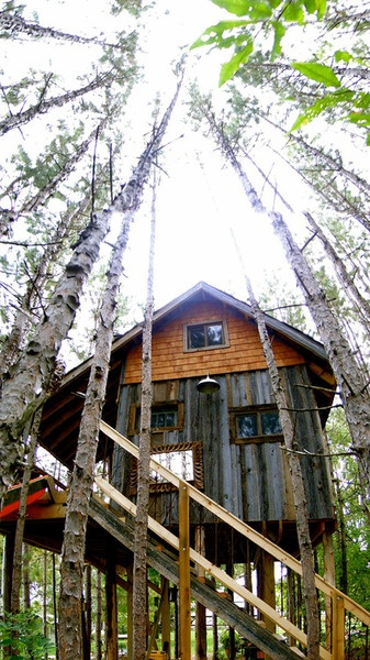 In other tree house news:  Interior designer Lynne Knowlton and her husband built a charming retreat in the trees on their property in Ontario, Canada.  Most of the materials they used arereclaimed, including the wood, which came from a friend's barn destroyed by a tornado, and the doors and windows, reused from old homes and a church. A slide — yeah, a slide! — came from a playground. The rusty spindles on the porch and stairway were found at a yard sale. Even the kitchen sink