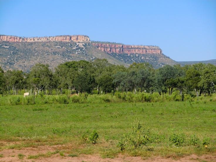 Digger's Rest, Gibb River Road, Western Australia