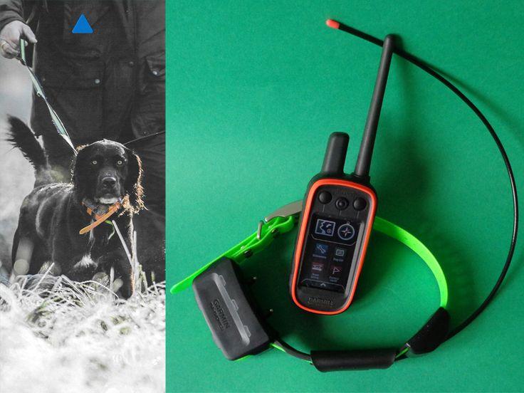 Alpha 100 Z Garmin Tt 15  www.pologar.pl (Śledzenie + Sygnalizacja Świetlna + Wibracja, Dźwięk, Stymulacja), Dla psów myśliwskich Garmin z GPS