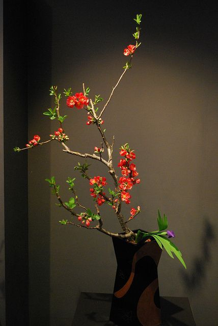 Kyoto Ikebana Exhibition Japanese flowers arrangement