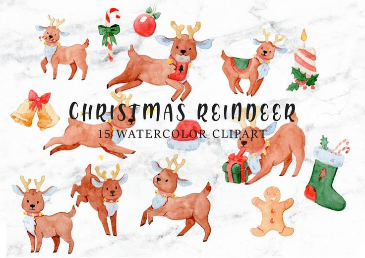 Christmas Clipart Reindeer Clipart Baby Reindeer Santa S Reindeer Rudolph Clipart Christmas Ornament Clipart Watercolor Clipart Png Blog Backgrounds Baby Clip Art Clip Art