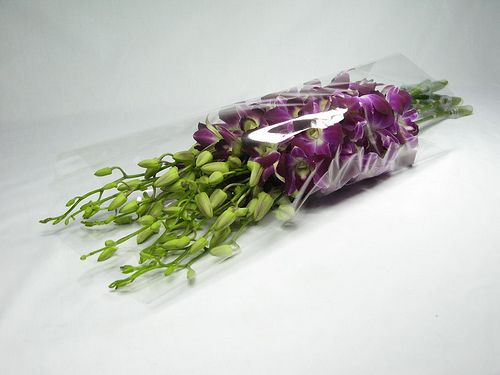 Dendrobium bouquet