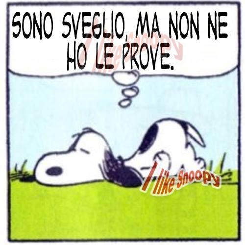 Charlie Brown Snoopy Vignette Buongiorno Amen Pallacanestro
