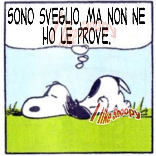 #Snoopy. I'm awake but I don't have the evidence.
