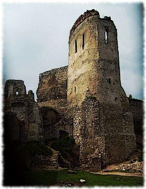 The castle tower Bathory was held prisoner in.