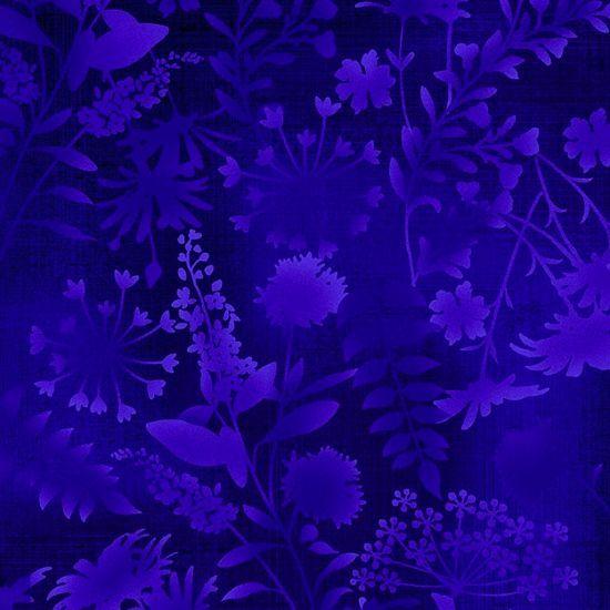 3380-77 Mariposa Meadow by Elizabeth Isles