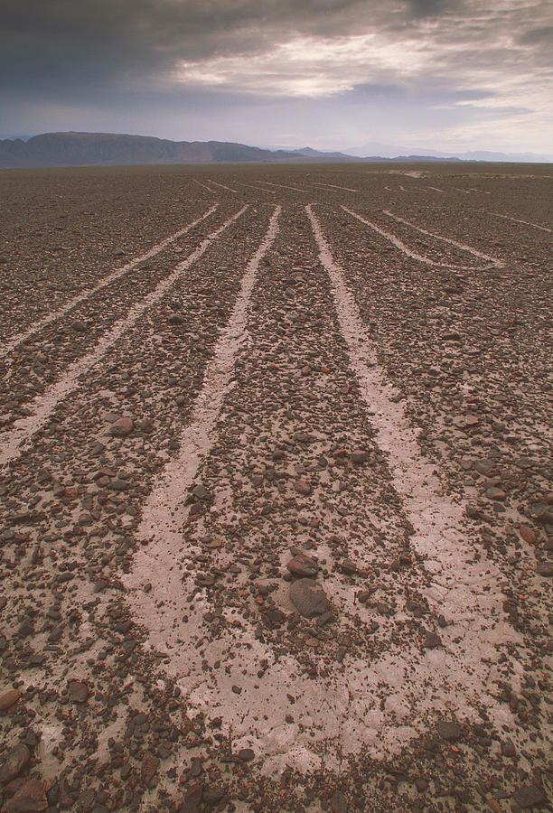 Nazca Lines Photograph  - Nazca Lines Fine Art Print