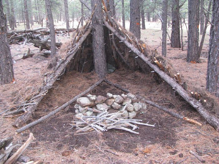 Learn To Make Shelters From Materials In The Woods During