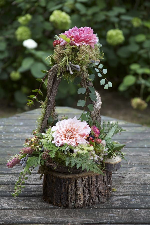 21 Best Images About Woodland Flowers On Pinterest