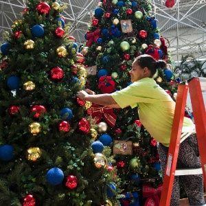 Para católicos, hoje é o dia certo para montar a árvore de Natal