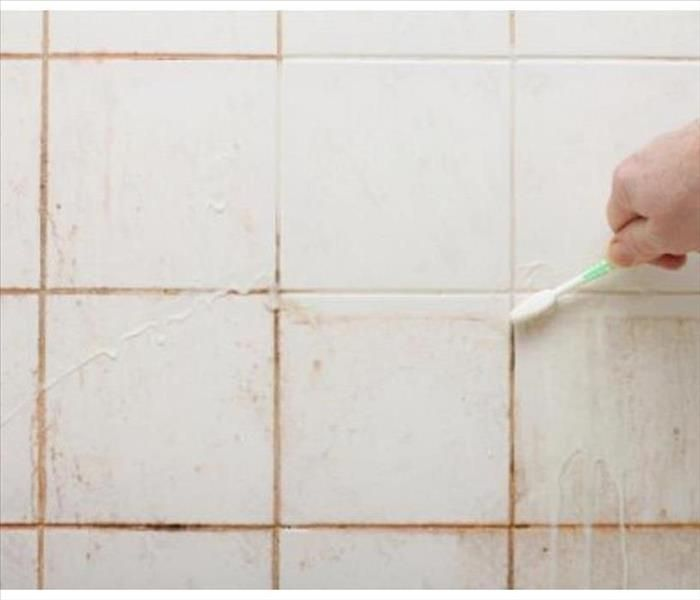Solved How To Get Rid Of Pink Mold In The Shower For Good