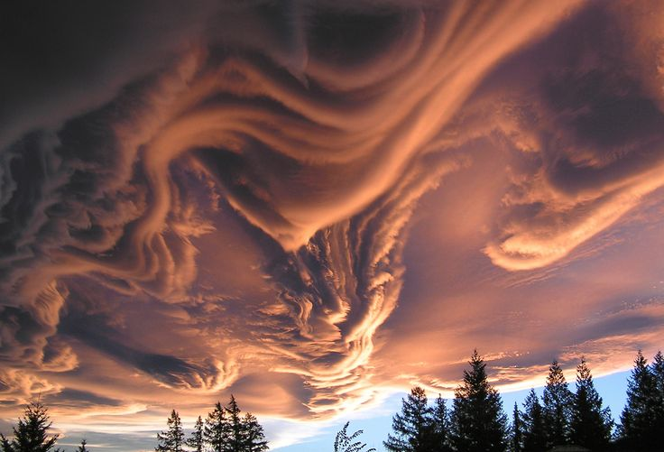 Known informally as asperatus clouds, this atmospheric phenomenon gets its name from the latin aspero, which roman poets used to describe the sea as it was roughened by the cold north wind