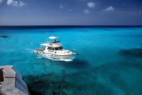 Cozumel......hermoso el mejor buceo y snorkel