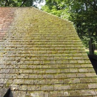 Best Moss Covered Cedar Shake Shingles Before Cleaning Cedar 640 x 480