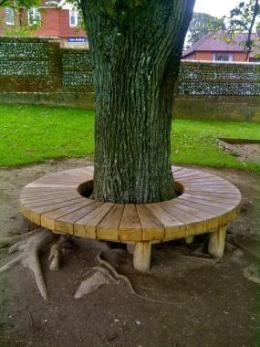 Radial tree seat in oak