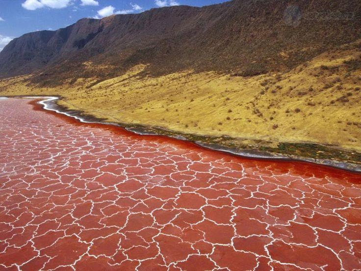 Lake Natron in Tanzania, scopri come visitarlo con Terre nel Cuore! www.terrenelcuore.it info@terrenelcuore.it