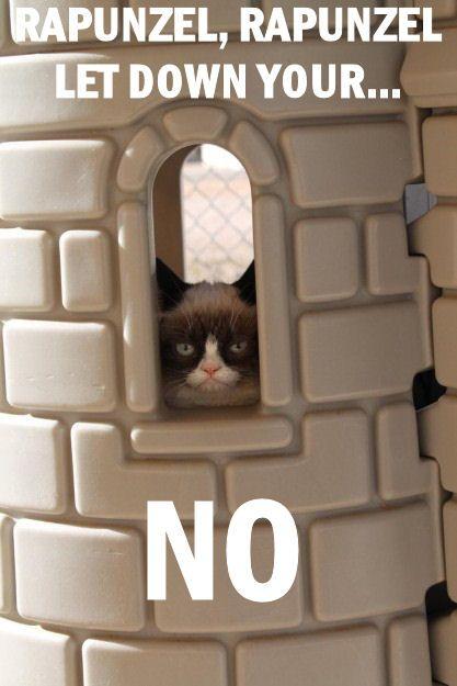 Grumpy Cat in the Castle hehehe