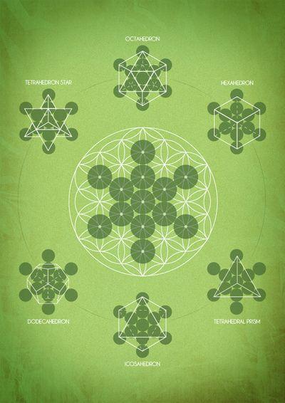 Sacred Geometry - the design of Nature - Geometría Sagrada - el diseño de la Naturaleza
