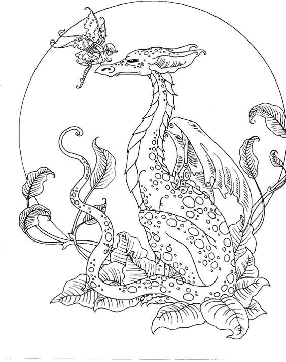 amy brown dragon colouring page - Coloring Pages Dragons Fairies