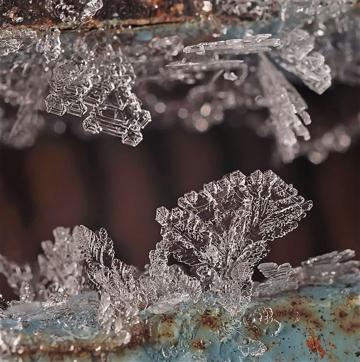 Pin By Andrew Garberolio On Bentley: 1000+ Images About ***** SNOW CRYSTALS ***** On Pinterest