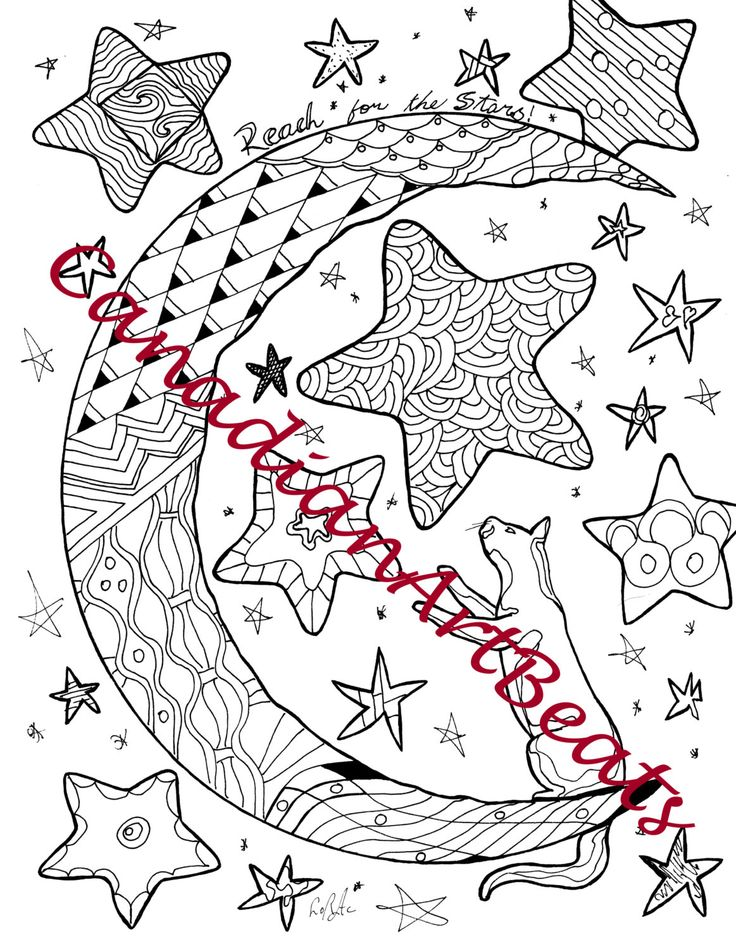 kitten reach for the stars inspirational downloadable printable coloring page by canadianartbeats on etsy
