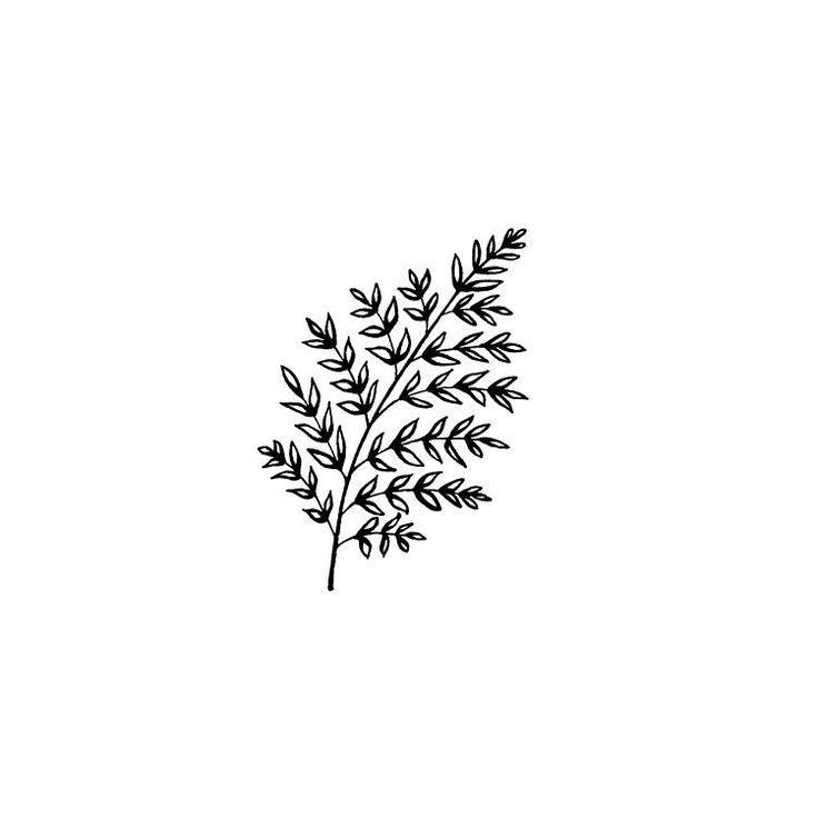 Branch illustration. #illustration #sketch #botanical