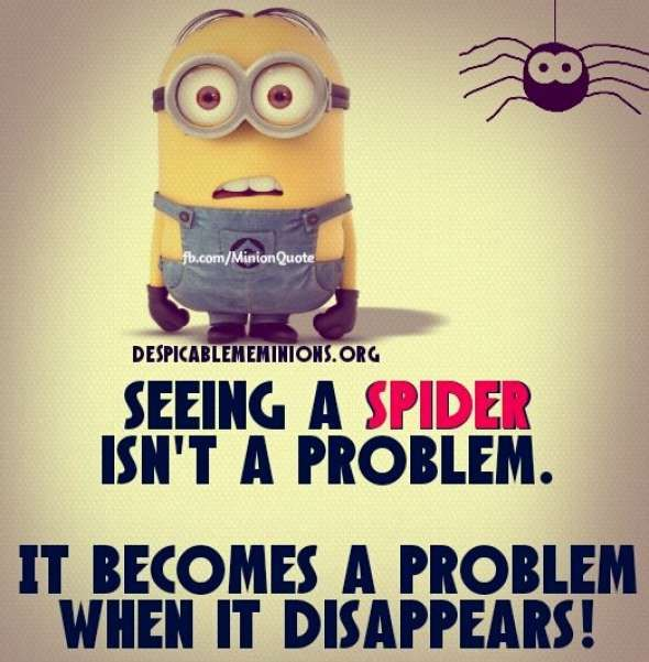 Seeing a spider